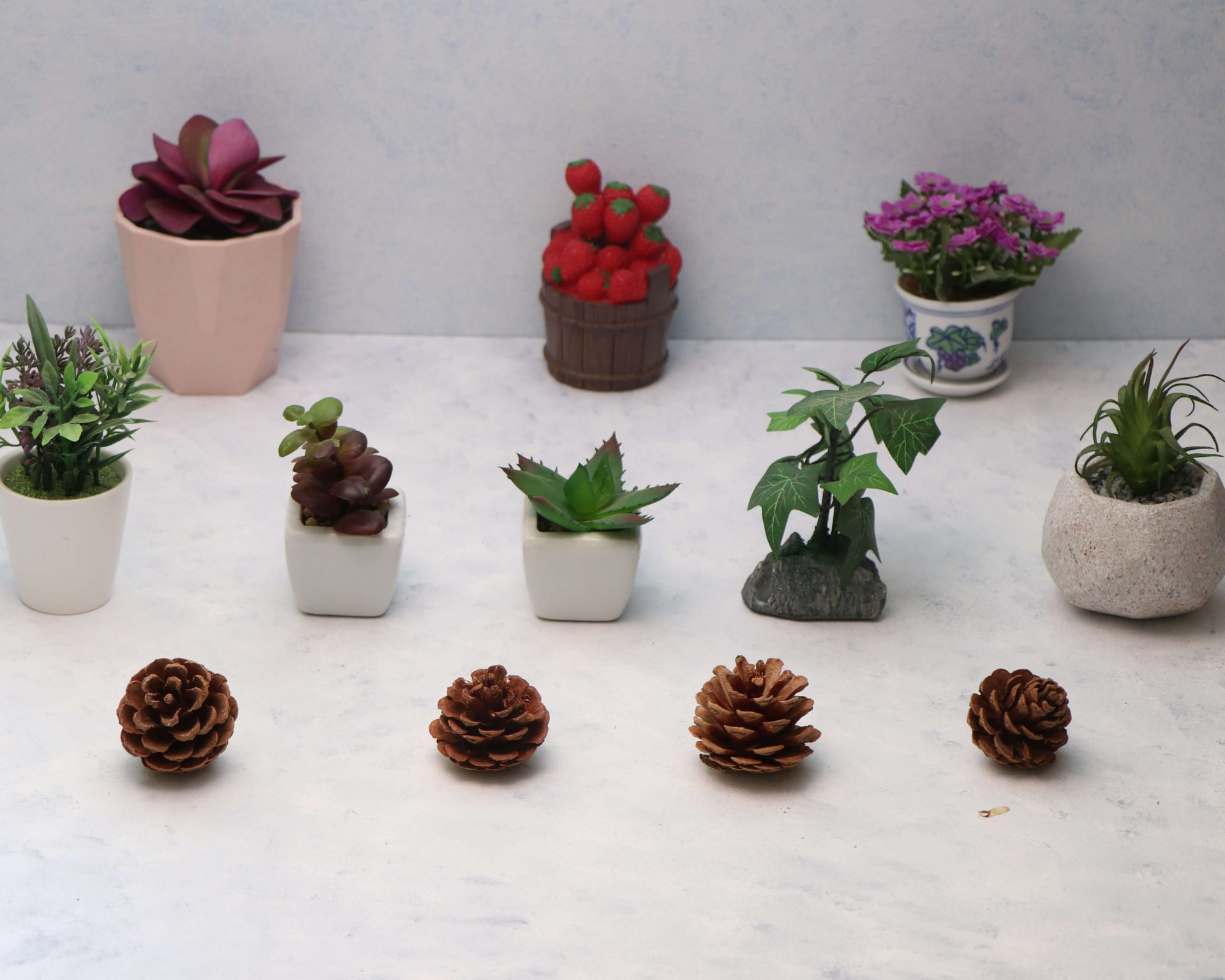 Planters on rent- Pune Prop store